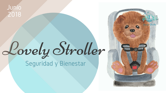 Seguridad y Bienestar | Lovely & Safety